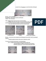 Aromaticity Handout