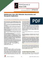 Glioblastoma Stem Cells
