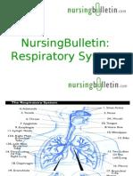 NursingBulletin Respiratory System