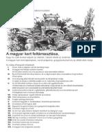 A Magyar Kert Feltámasztása 2012