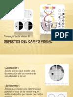 Defectos Del Campo Visual
