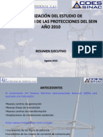 Resumen Ejecutivo ECP2010