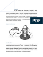 Biodigestores Fedex!Jose Luis (1)