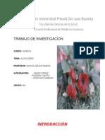 Alcaloides Quimica 13 Hojas
