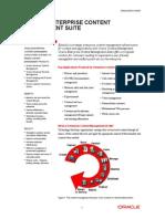 Enterprise Content Management Suite 070000