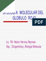 c1 Biologia Molecular de Gr Hector Herrera