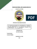 PROYECTO DE TESISS   ROXANA.docx