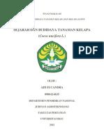 Tugas Makalah Kelapa (Adi Sucandra - 0906114635)