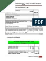 1 Solución Ej Medición Cereales- NIC41-2014