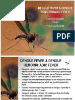 Dengue Fever & Dengue Hemorrhagic Fever