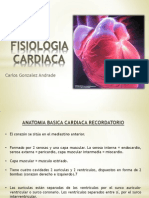 Fisiologiacardiacai Elcorazoncomobomba 130111121006 Phpapp01