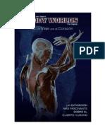 Body Worlds No Es Sólo Una Exposición Que Ha Estado Viajando Por El Mundo