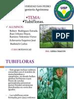 Botanika Tema Tubifloras