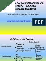agrotxicosnaalimentao-120214062745-phpapp01