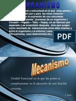 ORGANICO MECANICO