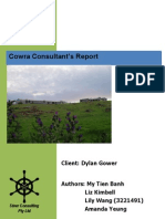 Cowra Consultant Report