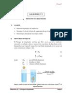 LAB Nº 2 - Principio de Arquímedes (1)