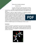 Lectura1.Proteinas y Grasas