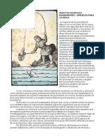Insectos Acuaticos Bonaerenses – Señuelos Para La Pesca