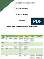 Matriz Sobre Los Grupos Étnicos Del Ecuador