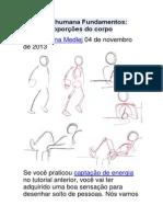 Anatomia Humana Fundamentos- Básico Proporções Do Corpo