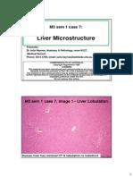 Liver Histology - Medicine 3