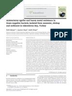 Antibacterial Agents and Heavy Metal Resistance In