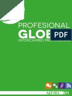 Portafolio OGIP