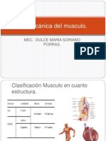 Biomecánica Del Musculo