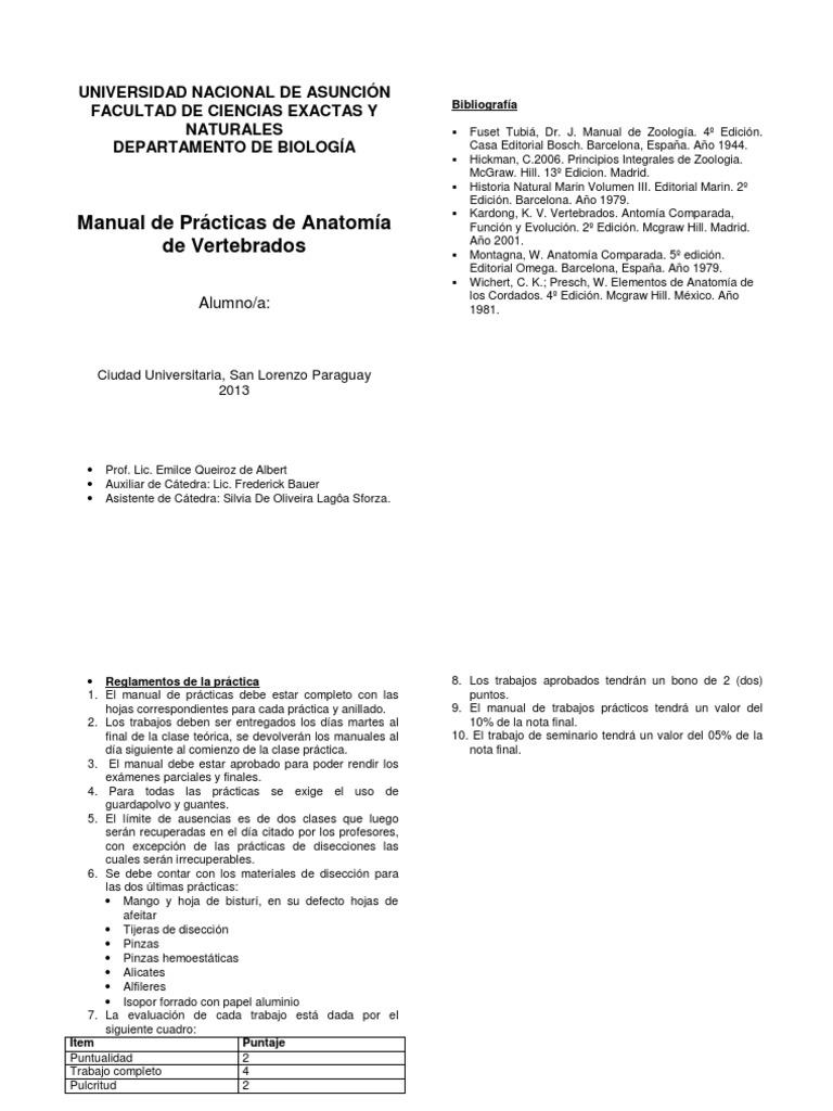 Lujo Vertebrados Evolución De La Función Anatomía Comparada ...