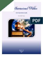 DIN0211 - Direito Internacional Público I - Casella - Giselle Viana(185-12) - 1o Bimmarcado