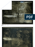 Daguerreotype Landscape