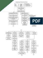 Pathophysiology of Rheumatic Heart Disease