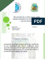 Diapositivas-Gallinaza