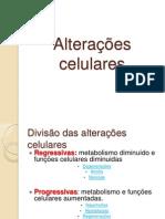 Aula 3 Alterações Celulares b