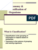 Copy of Classification and Taxonomy