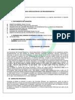 ECOSOC - Dinámicas y Procedimientos.pdf
