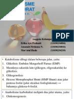 Review Pertemuan 3 - Metabolisme