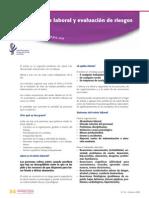 Ficha Estres Laboral y Evaluación de Riesgos