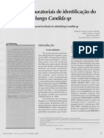 Candida sp