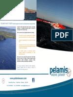 PWP Brochure Online