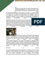 Manual Mecanica Automotriz Sincronizacion en Vehiculos