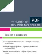 Técnicas de biología molecular.pptx