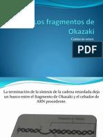 Los Fragmentos de Okazaki