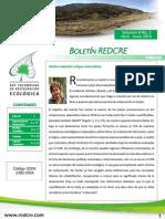 Boletín Redcre Vol (8) No. 2