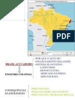 Brasil Acucareiro e Sociedade Colonial(1)