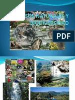 Recursos Naturales y Biodiversidad.pptx Semana 2