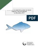 Identificacion-peces
