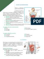 Gastritis y Ulcera Peptica-duodenal[3]