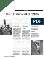 Lexico Del Maguey}